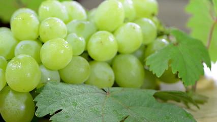 Green Grapes (seamless loopable)