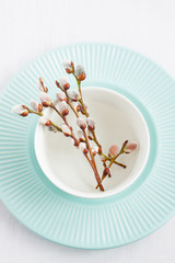 Willow branches with catkins in a white bowl