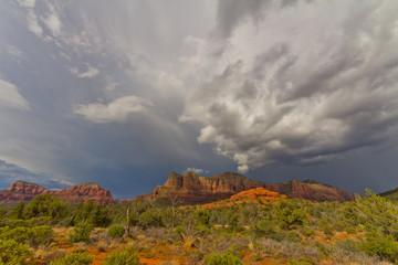 アリゾナ セドナ ボルテックス Arizona Sedna vortex