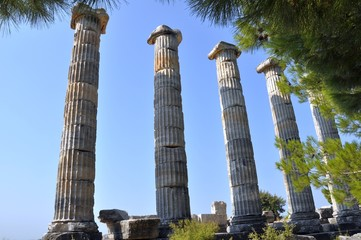 Temple of Athena in Priene