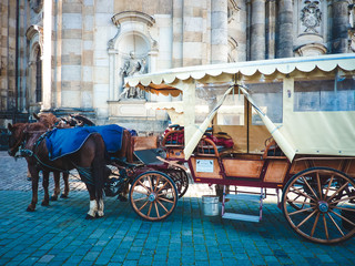 Wagon with horses stand in European city