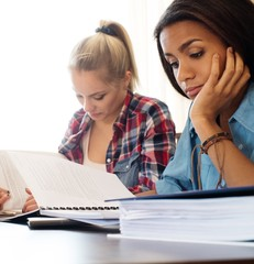 Students preparing for exams in apartment interior