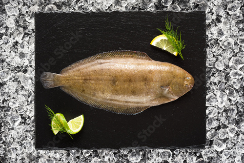 Papiers peints Poisson Sole fish on ice on a black stone plate top view