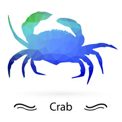 Crab with triangles of different colors. Raster