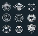 Vector Grungy Gym and Fitness Logo, Labels and Athletic Badges
