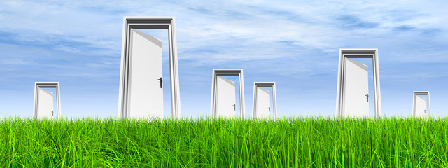 White door in grass with sky banner
