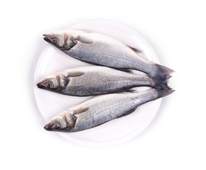 fresh seabass fish on plate