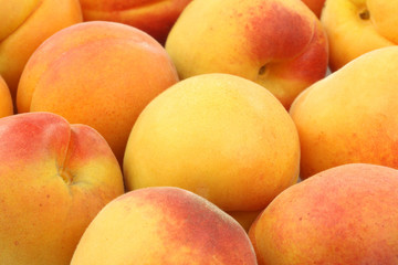 fresh colorful apricots background