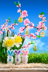 rabbits easter with peach blossom and narcissus