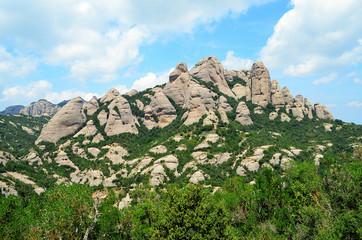 Montserrat needles