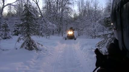 Motoneige au delà du cercle polaire en Laponie Finlandaise