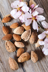 Almonds and flower tree in a wooden background