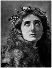 Beautiful Woman : Portrait