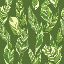 Tropische Bladeren Achtergrond - vintage naadloze patroon