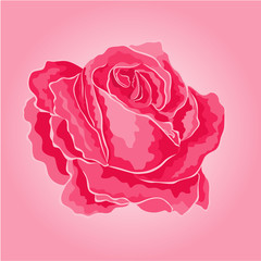 Rose pink simple  symbol  of love vector