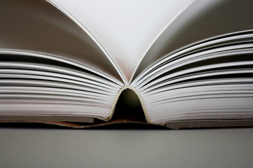 Detail of an symmetrically opened book.