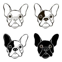 French Bulldog. Vector set of  bulldog's face. Hand-drawn vector