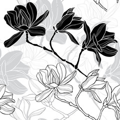Monochrome  seamless  background with magnolia.