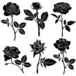 Obrazy na płótnie, fototapety, zdjęcia, fotoobrazy drukowane : Set of silhouette of roses