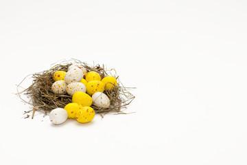 Bunter Eierhaufen im Nest