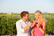 Red wine drinking couple toasting at vineyard - 79051791