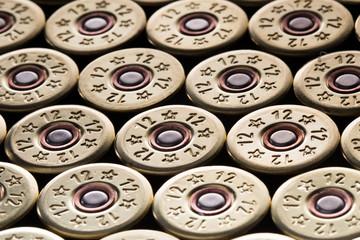 12 gauge shotgun shells used for hunting