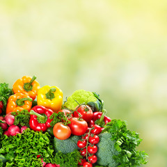 Vegetables over green background.