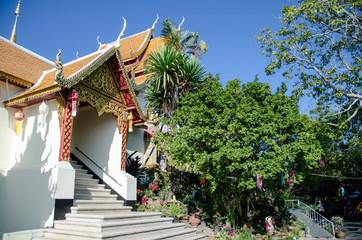 Templio e cespugli - Doi Suthep - Chang mai - Thailand