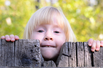 Little Blond Girl Peeking Over a Wooden Fence