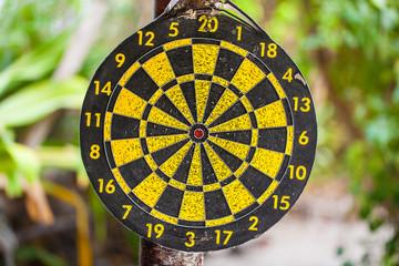 Jungle bullseye