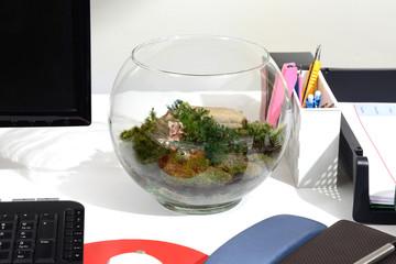 Make green with terrarium.