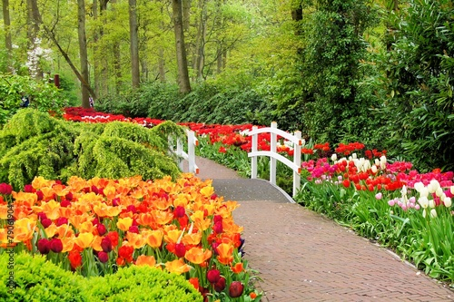 Tuinposter Tuin Walkway through spring flowers at Keukenhof Gardens, Netherlands