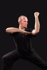 Martial arts teacher fighting stance