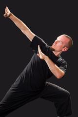 Martial arts teacher in fighting pose