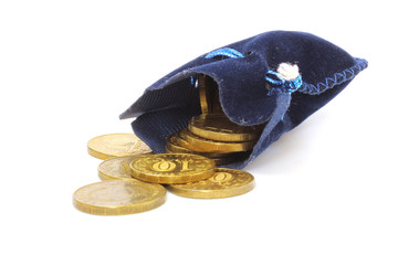 Gold coins in bag