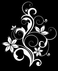 рост цветка