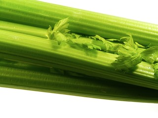 A close up of a isolated fresh green celery