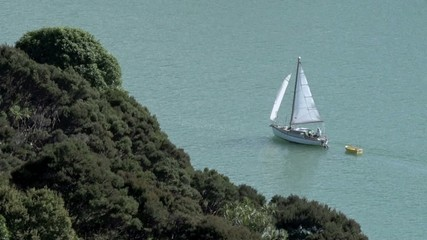 Yacht sails along New Zealand coast