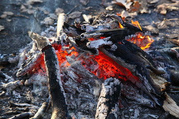 Close up of an outdoor fire burning.