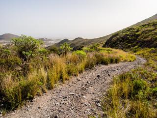 Rocky landscape of Tenerife. Canary Islands. Spain