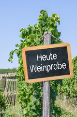 Tafel im Weinberg - Heute Weinprobe