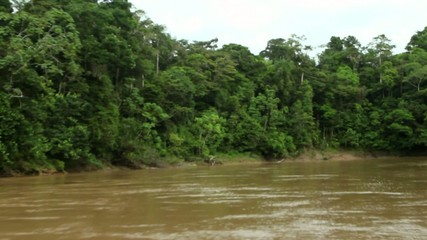 Traveling down Rio Cononaco in a motorised canoe, Ecuador