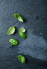 Basil leaves on a black slate