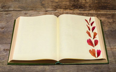 open book and pressed flower