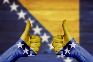 Bosnia and Herzegovina flag painted on female hands thumbs up