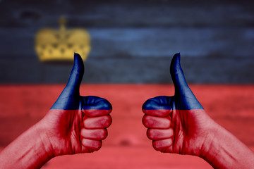 Liechtenstein flag painted on female hands thumbs up