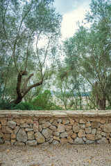 Stone wall design on nature background.