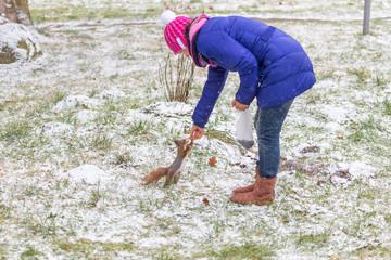 Woman feeding a squirrel in a winter park