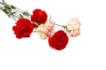 bouquet from carnations on a white background