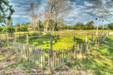 wooden fence in a green field in hdr